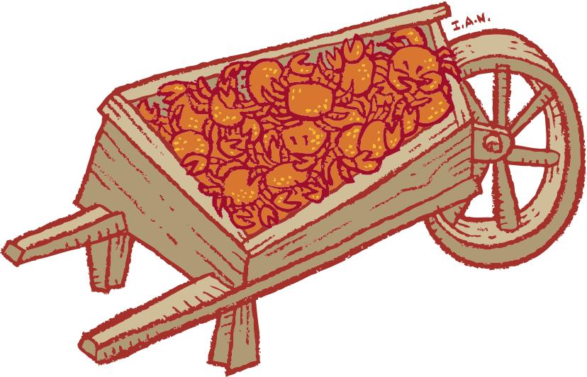 crab cart