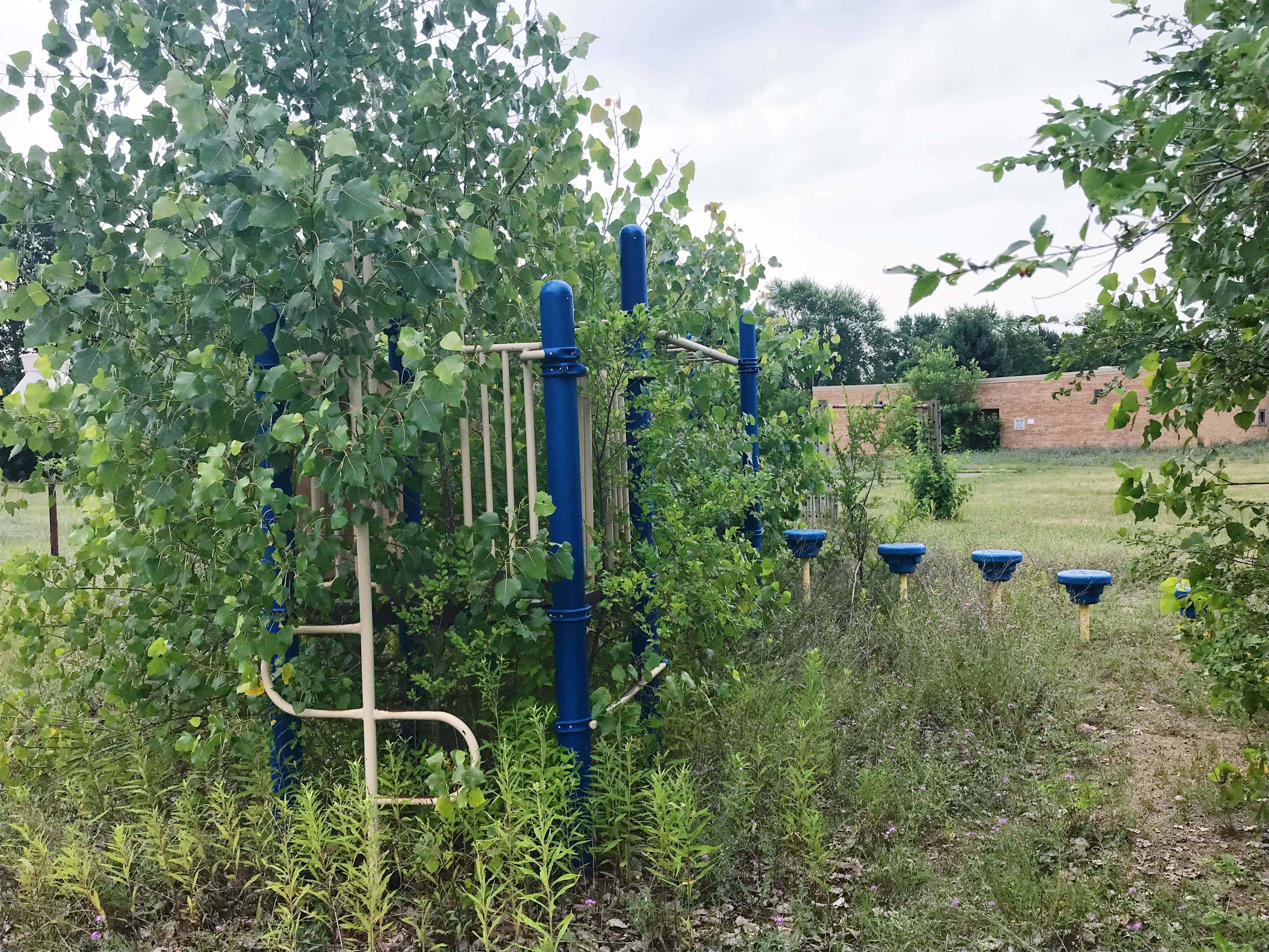 Old playground equipment at the Kettering school, overgrown with weeds.