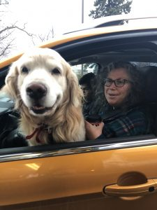 A Roadshow guest with her dog in the car.