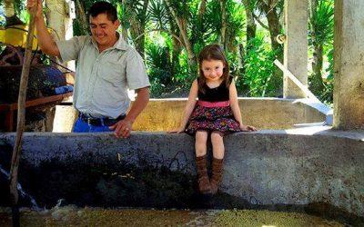 High Grown Honduras Coffee from Farmer Pablo Paz
