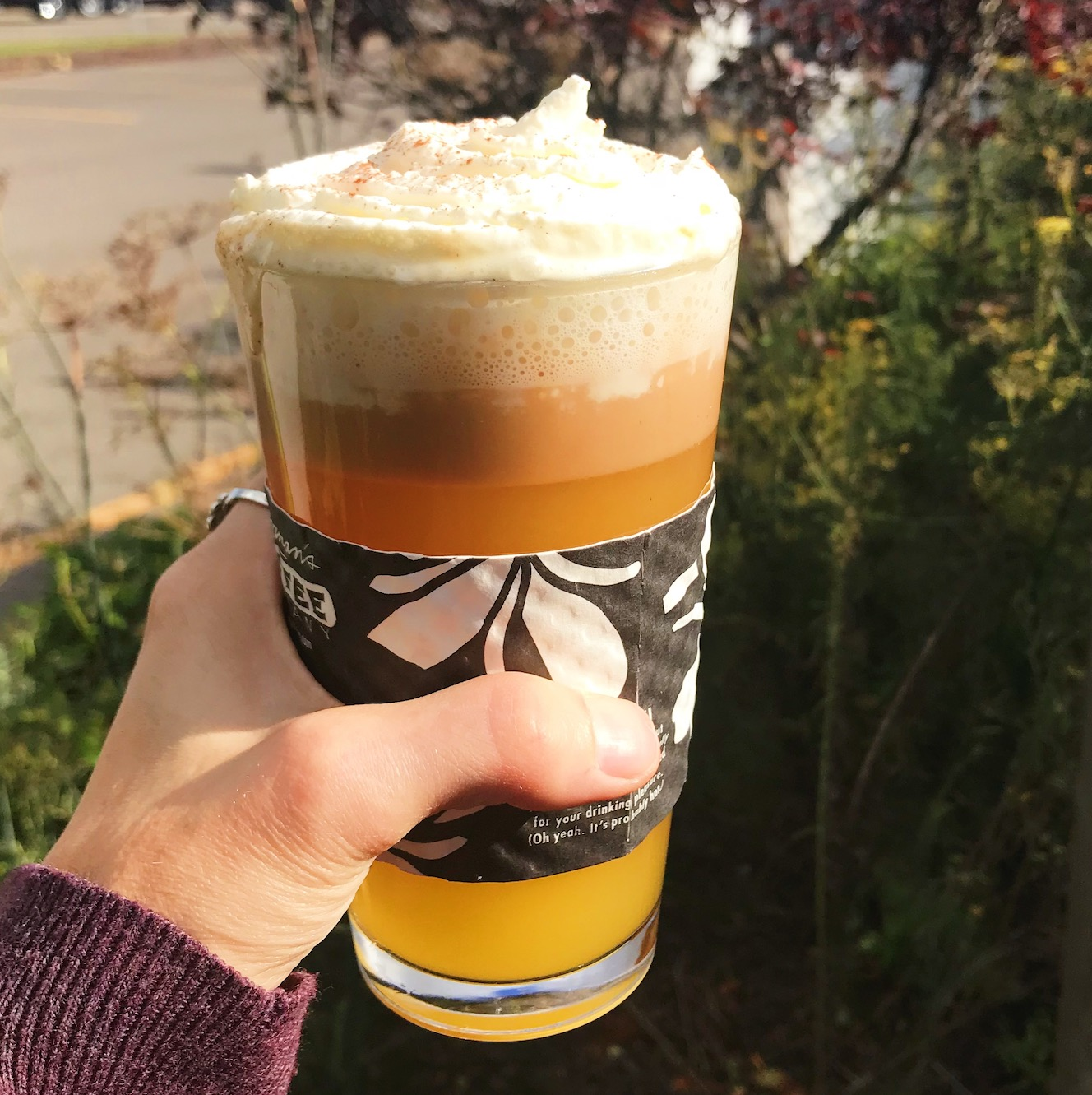 A pint of Caramel Apple Cider with whipped cream on top.