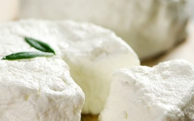 Hand-ladled City Goat Cheese Rounds from the Creamery